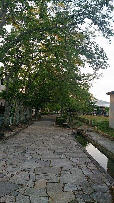 本町公園.jpg