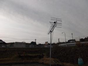 後藤邸(落合)A11-026 009.jpg